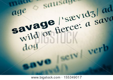 Close Up Of Old English Dictionary Page With Word Savage