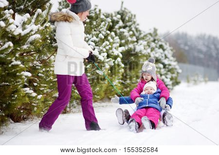 Two cute little sisters enjoying sleight ride with their mother on snowy winter day