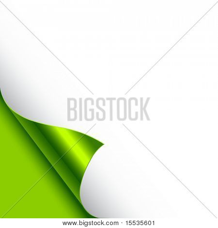 A paper page curl in green. Vector illustration.