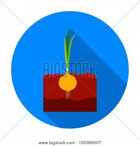 Onion icon in flat style isolated on white background. Plant symbol vector illustration.