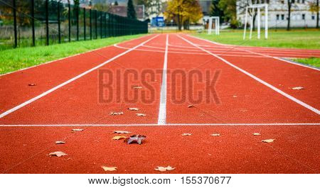 Maple Leafs On Athletic Running Track In Stadium.