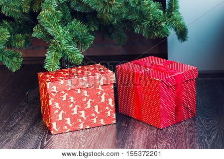 Two Gift boxes under a Christmas tree
