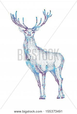 festive Christmas reindeer. hand drawn image of big white tail buck head with large antlers white-tail deer vector illustration animal isolated on white background for hunting products billboards website wildlife sketch clipart