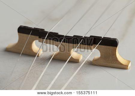Banjo bridge close up