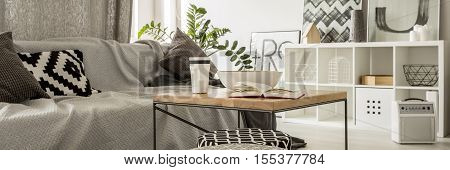 Grey living room with sofa rack and coffee table