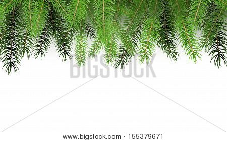 Arranged Green Fir Tree Branches. Illustration with Copy Space for Your Design. Greeting Card Christmas Background Template.