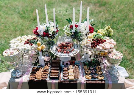 candy bar with fruit and flowers in sunny wedding day