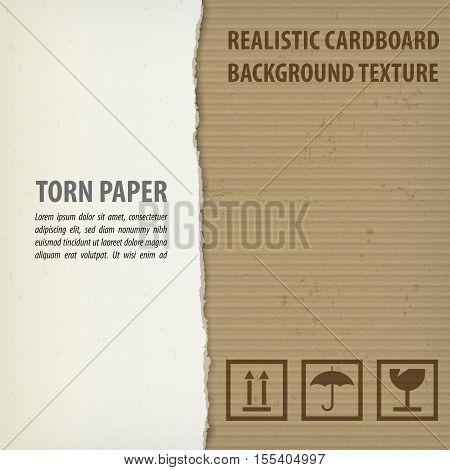 Torn Cardboard Pieces