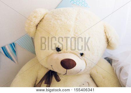 Toy teddy bear a stuffed toy bear