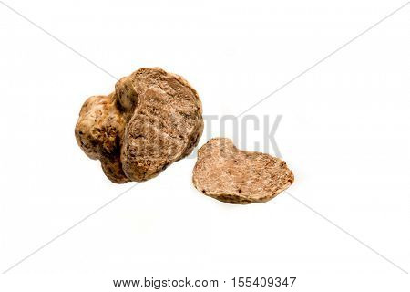 white truffle isolated on white