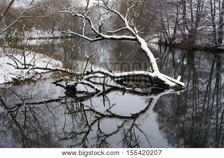 Winter landscape. Snow, river, tree and its reflection in water.