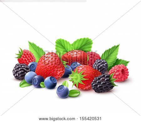 Berries realistic composition with strawberry raspberry blueberry and blackberry vector illustration