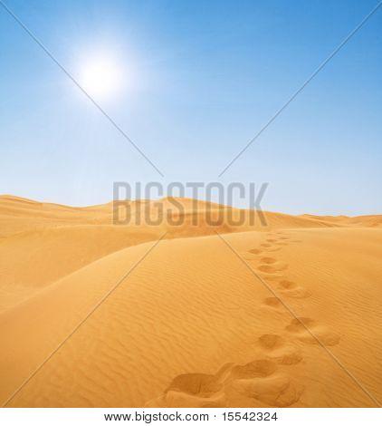 footsteps in desert