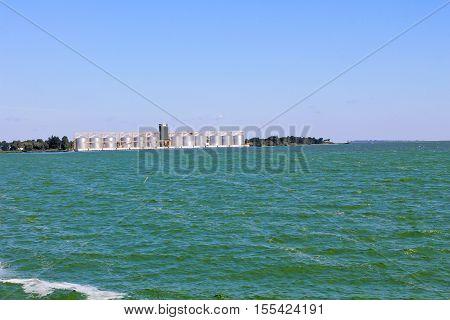 Blooming green water in reservoir on Dnieper river