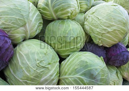 Cabbage on the market in Bulgaria - close up