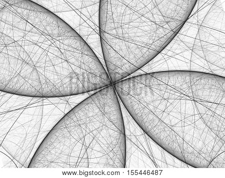 Black and white butterfly fractal computer generated abstract background 3D render
