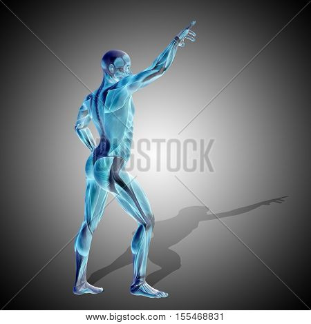 Concept or conceptual strong human or man 3D illustration anatomy body with muscle for health or sport over gray background