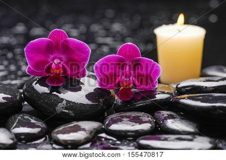 Still life with red orchid ,candle with therapy stones