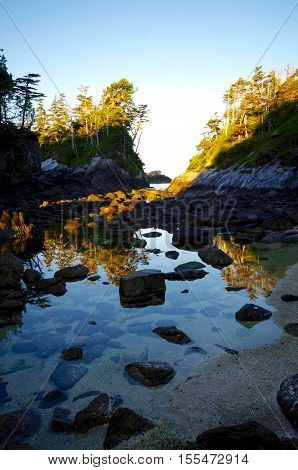 Low tide reveals a crystal clear tide pool with reflections of tree covered islands in the Great Bear Rainforest British Columbia.