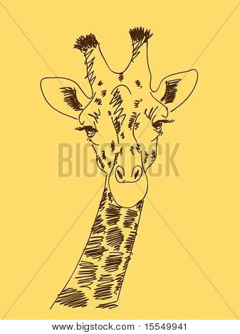Hand drawn giraffe Vector. Visit my portfolio for big collection of doodles