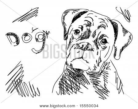 Hand drawn dog. Visit my portfolio for big collection of doodles