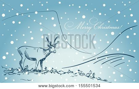 Christmas card hand drawn reindeer on blue winter background of Lapland landscape