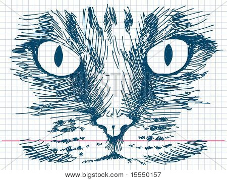 Hand drawn cat face. Visit my portfolio for big collection of doodles