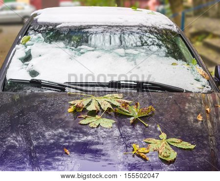 Fragment of car covered with fallen leaves on a hood and snow on a windshield and roof
