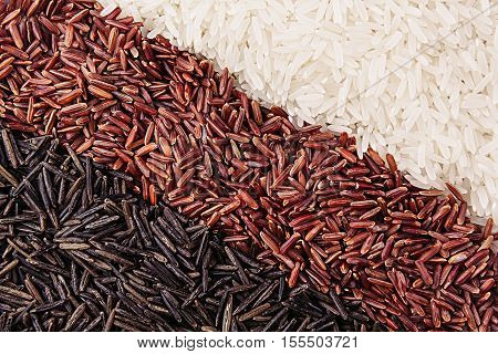 Strips of red black and white rice close-up. Rice texture background. Macro.