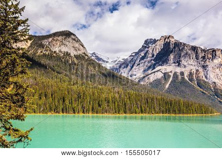 Emerald Lake in Yoho National Park, Rocky Mountains, Canada. The green lake surrounded by a coniferous forest