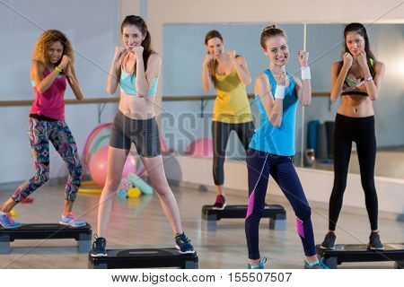 Group of women posing on aerobic stepper in gym