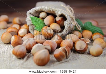 hazelnuts in a bag with green leaf on wooden background
