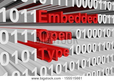 Embedded OpenType in the form of binary code, 3D illustration
