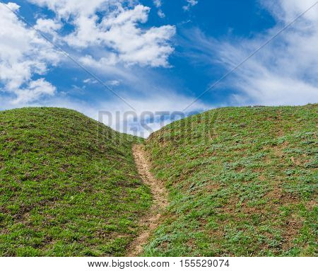 Landscape with hiking path on a Blue-Green planet.