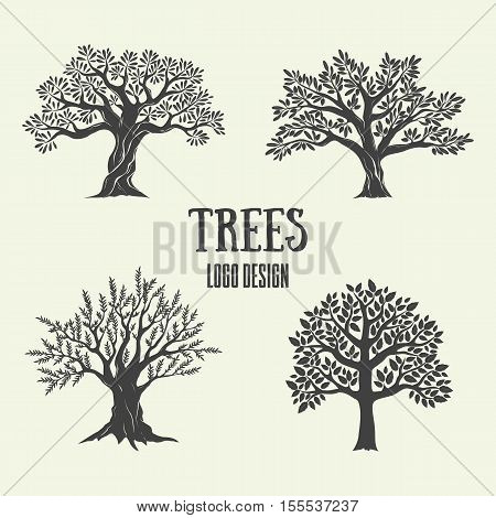 Creative olive, argan and coffee trees silhouette. Vector illustration. Logo design with tree used for advertising products premium quality.