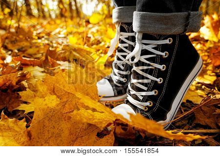 Human feet in sneakers on autumn leaves, close up view
