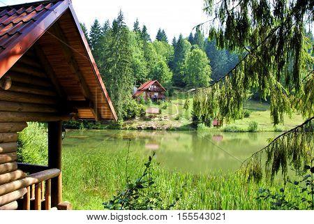 Paisaje del bosque con casas para vacaciones