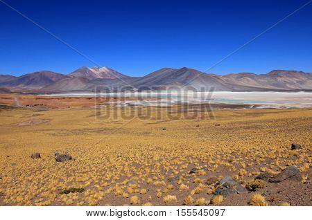 Salar Aguas Calientes, Atacama desert, near San Pedro De Atacama, Chile