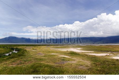 Ngorongoro Crater Conservation Area on a background cumulus clouds, Tanzania. East Africa