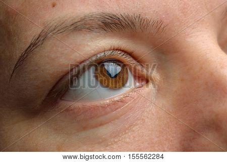 Eye Close Up - Brown Eyes Looking Sideways. Closeup Of Brown Female Eye.