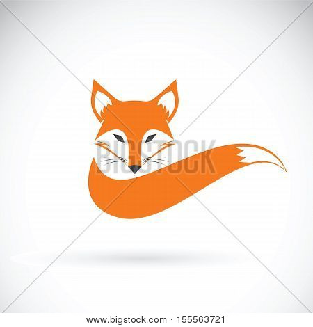 Vector image of a fox design on a white background Wild Animals