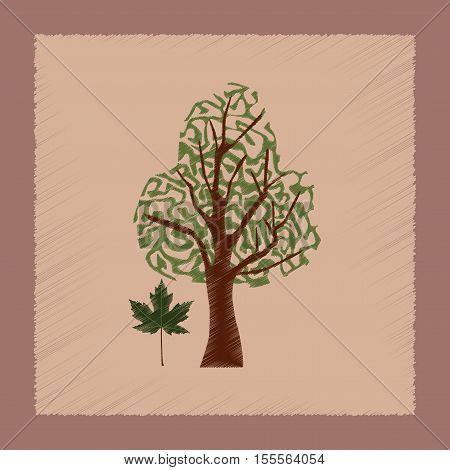 flat shading style Illustrations of plant Acer