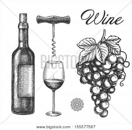 Hand Drawn Wine Elements including wine glass, bottle, wine cork, grape, corkscrew.