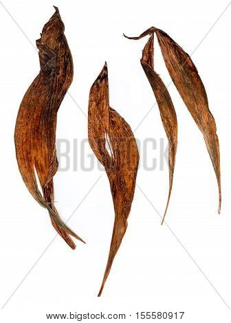 Application Of Dried Pressing Lily Of The Valley Leaves