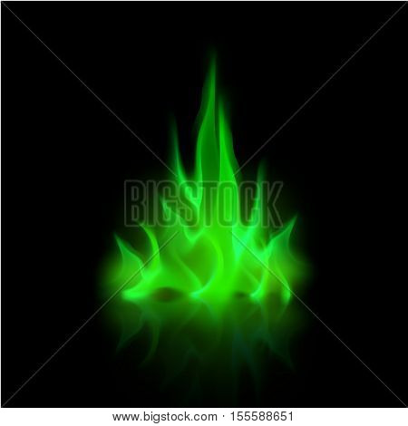 Vector Green Magic Fire Flame Bonfire  Isolated on Background