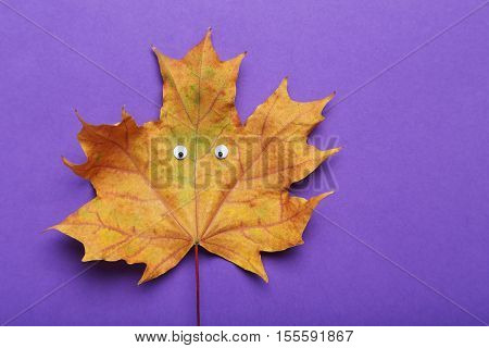 Autumn leaf with googly eyes on purple background