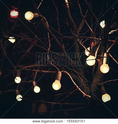 Glowing light bulbs on tree in dark at night on black background