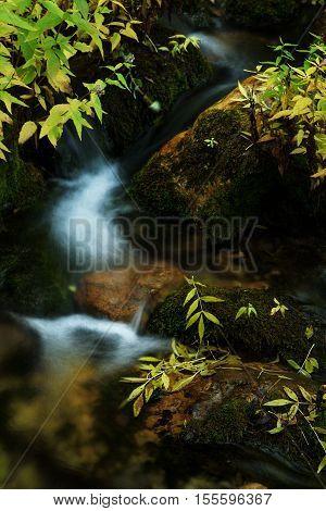 Cascade falls over mossy rocks at Nacimiento del Rio Mundo in Riopar, Albacete, Spain