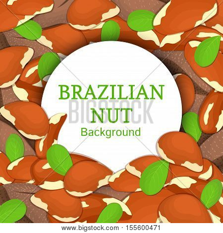 Round white frame on brazilian nut background. Vector card illustration. Circle Nuts frame, brazilnut fruit in the shell, whole, shelled, leaves appetizing looking for packaging design of healthy food