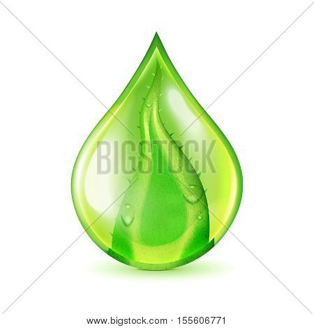 Isolated image of realistic water drop shaped green aloe vera leaf conceptual element on blank background vector illustration